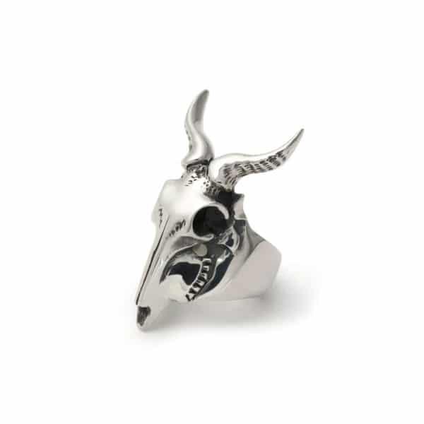 small-kudu-ring-angled-web