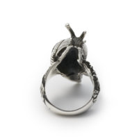 snail-ring-back