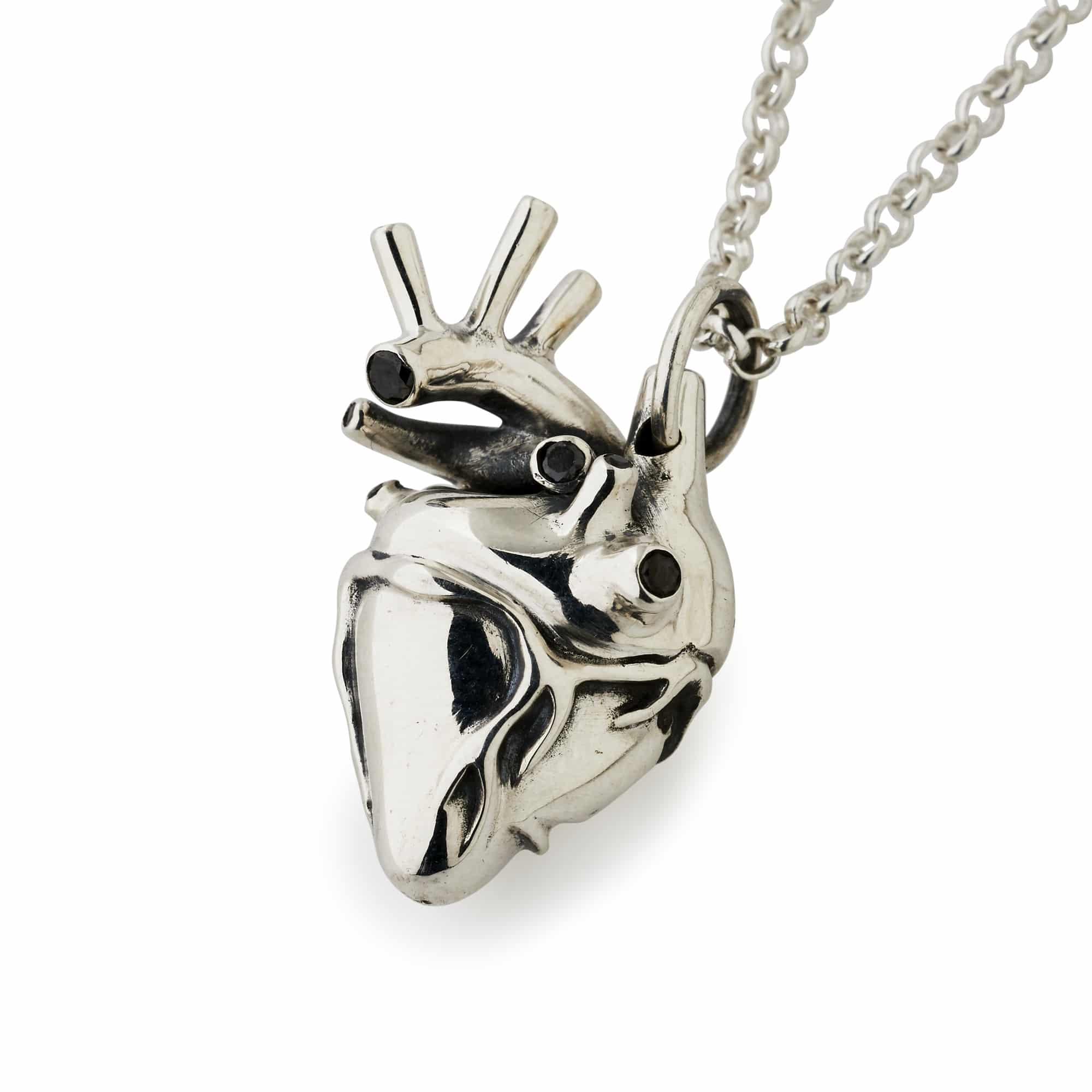 Small Silver Anatomical Heart Pendant – The Great Frog