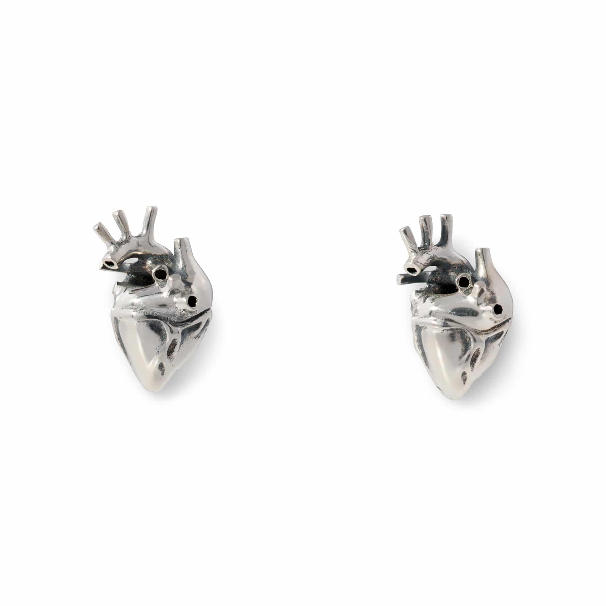 Anatomical Heart Earrings