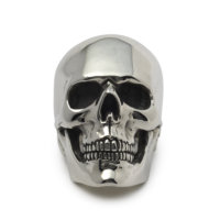 anatomical-skull-ring-front