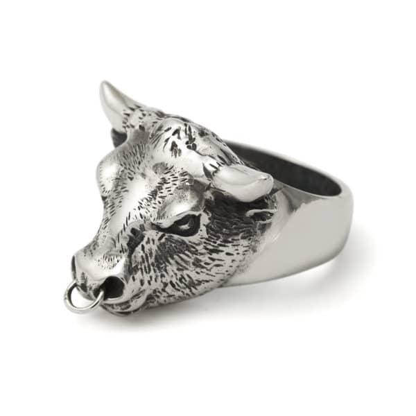 bull-ring-with-silver-nose-ring-angled