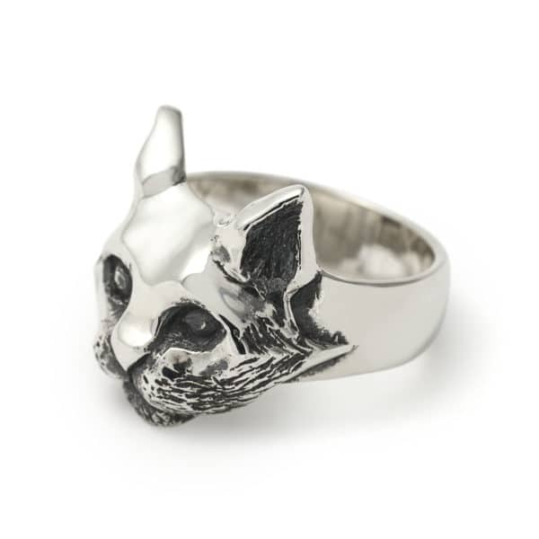 cat-ring-angled